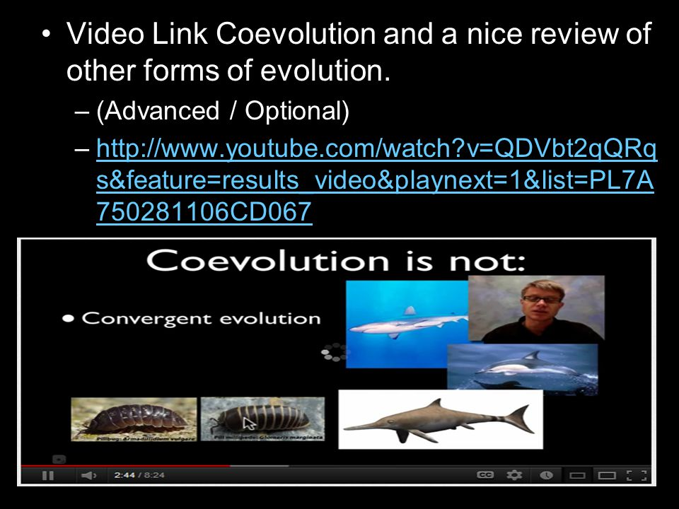 Video Link Coevolution and a nice review of other forms of evolution.