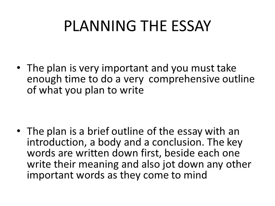 writing postgraduate essays ppt  planning the essay the plan is very important and you must take enough time to do