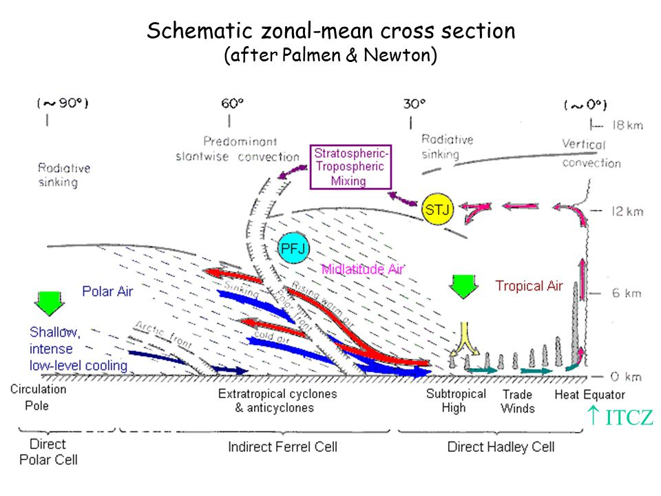 Schematic zonal-mean cross section (after Palmen & Newton)