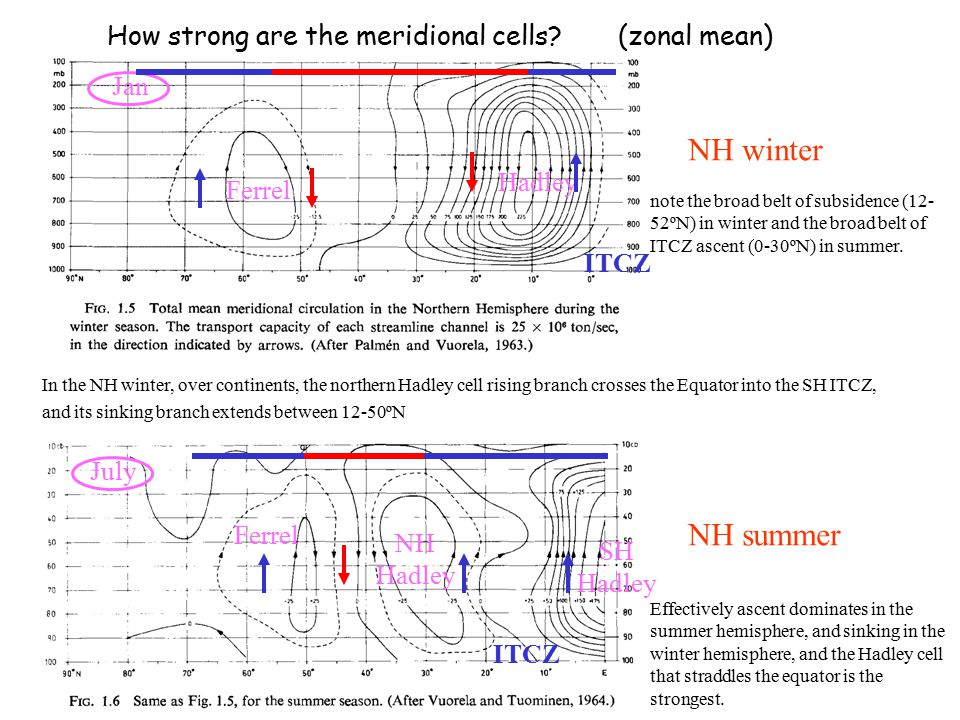 How strong are the meridional cells (zonal mean)