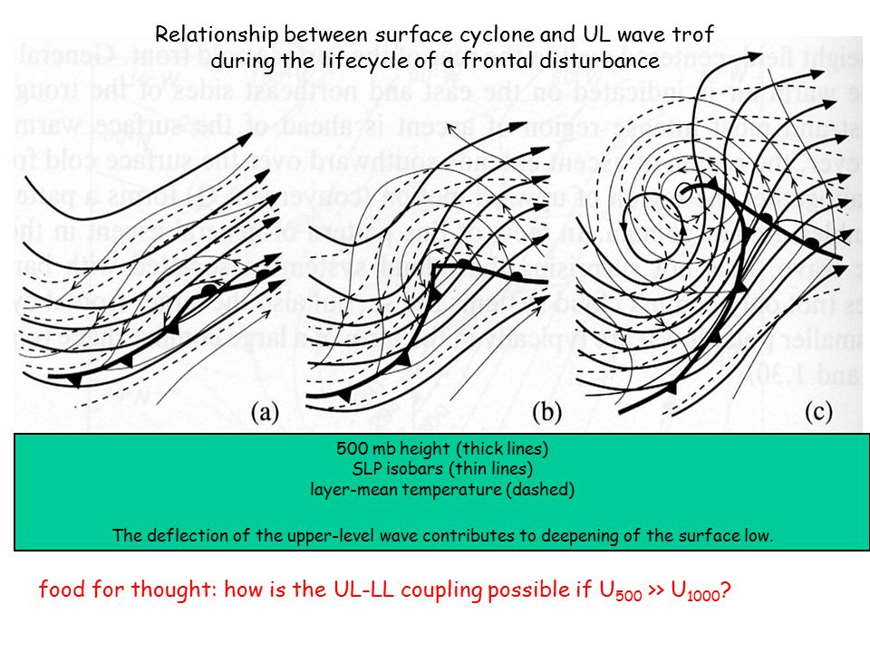 Relationship between surface cyclone and UL wave trof during the lifecycle of a frontal disturbance