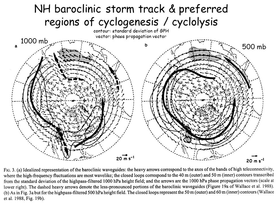 NH baroclinic storm track & preferred regions of cyclogenesis / cyclolysis contour: standard deviation of GPH vector: phase propagation vector