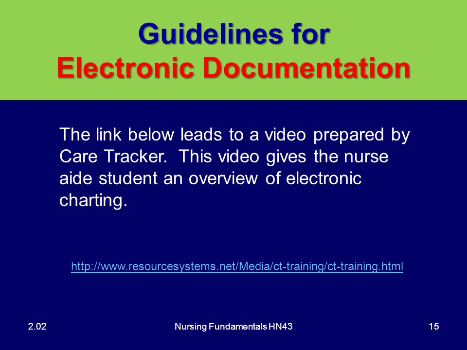 Guidelines for Electronic Documentation