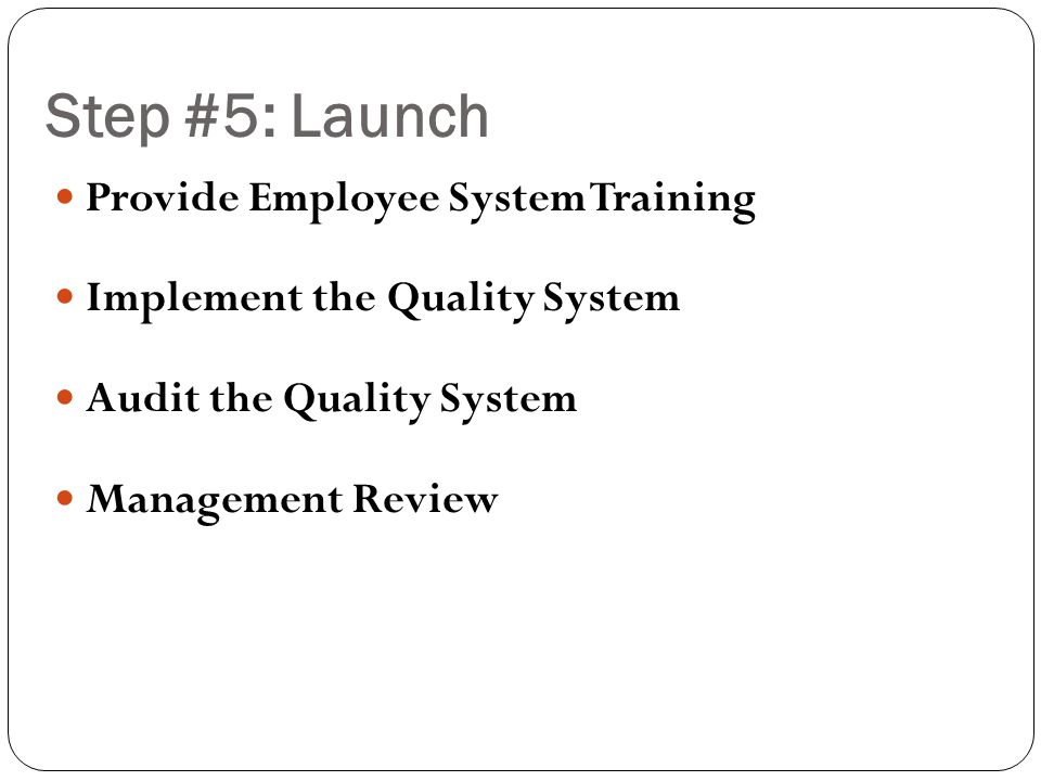 Step #5: Launch Provide Employee System Training