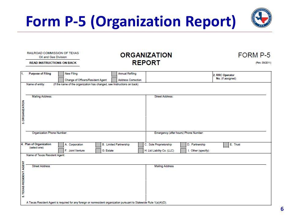Form P-5 (Organization Report)