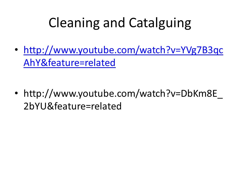 Cleaning and Catalguing