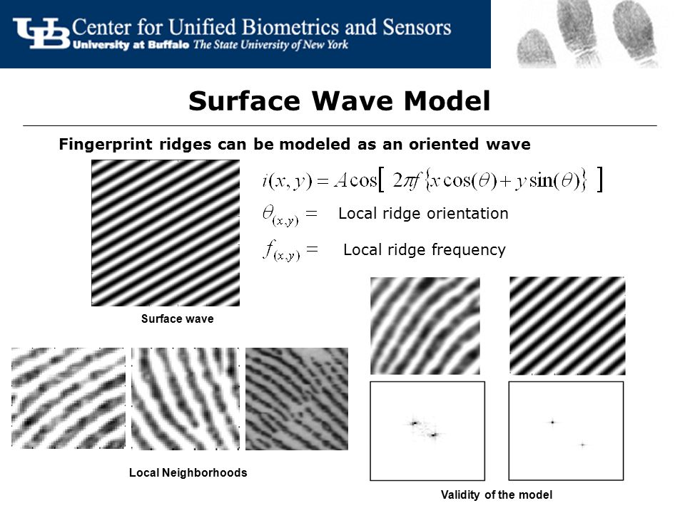 Surface Wave Model Fingerprint ridges can be modeled as an oriented wave. Local ridge orientation.