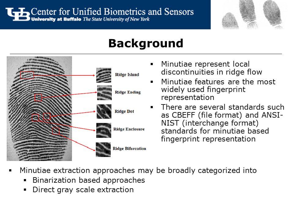 Background Minutiae represent local discontinuities in ridge flow