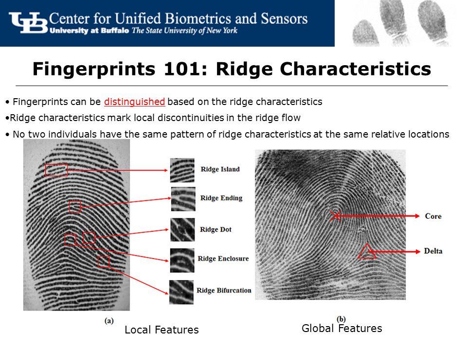 Fingerprints 101: Ridge Characteristics