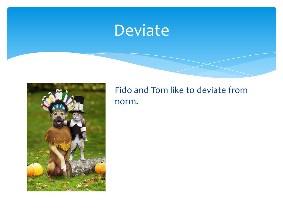 Deviate Fido and Tom like to deviate from the norm.