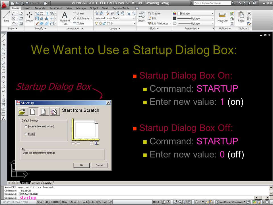 We Want to Use a Startup Dialog Box: