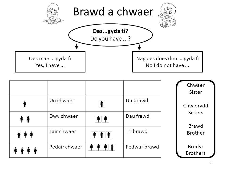 Brawd a chwaer Oes...gyda ti Do you have ... Oes mae ... gyda fi