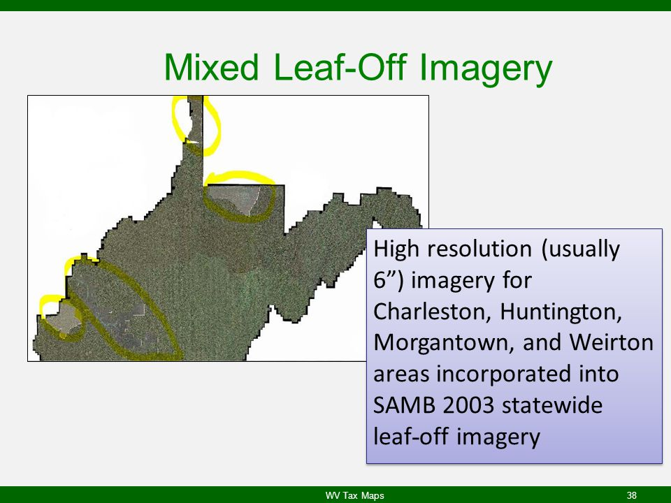 Mixed Leaf-Off Imagery