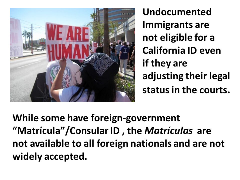 Undocumented Immigrants are