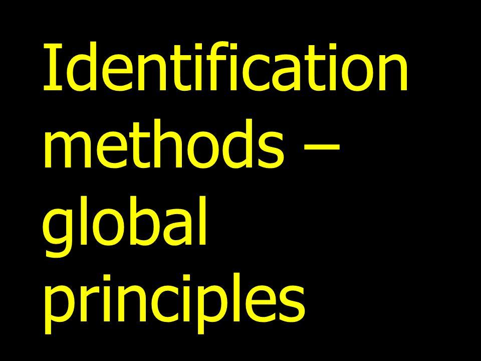 Identification methods – global principles