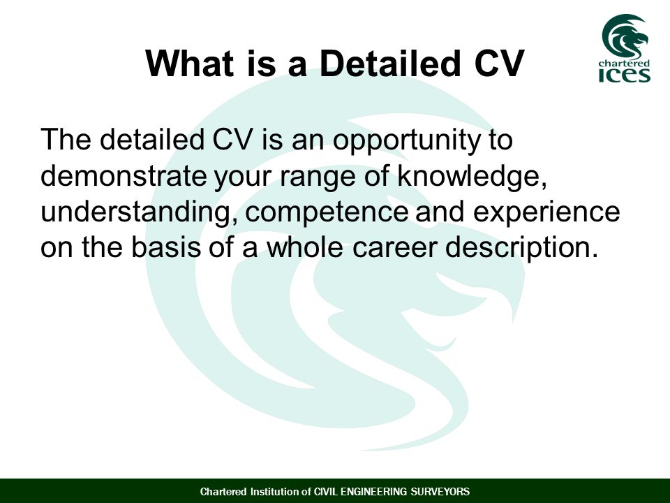 What is a Detailed CV