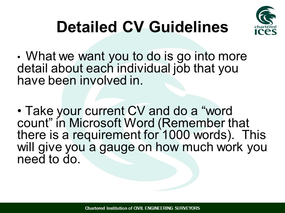 Detailed CV Guidelines