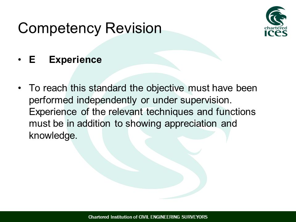 Competency Revision E Experience