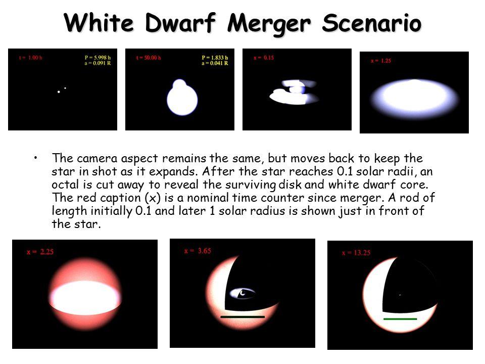 White Dwarf Merger Scenario