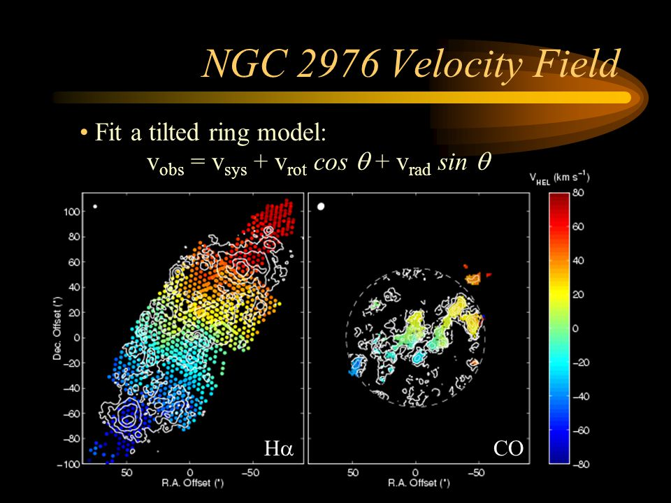 NGC 2976 Velocity Field vobs = vsys + vrot cos q + vrad sin q