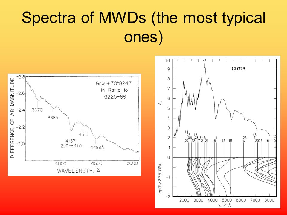 Spectra of MWDs (the most typical ones)