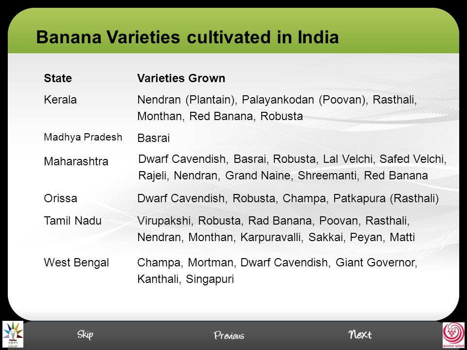 Banana Varieties cultivated in India