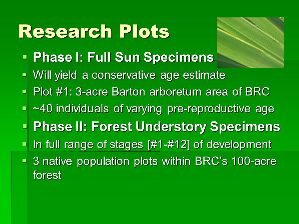 Research Plots Phase I: Full Sun Specimens