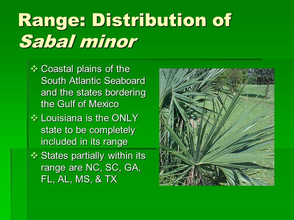Range: Distribution of Sabal minor