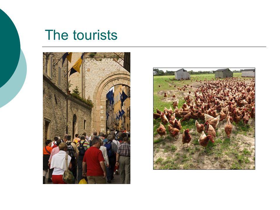 The tourists