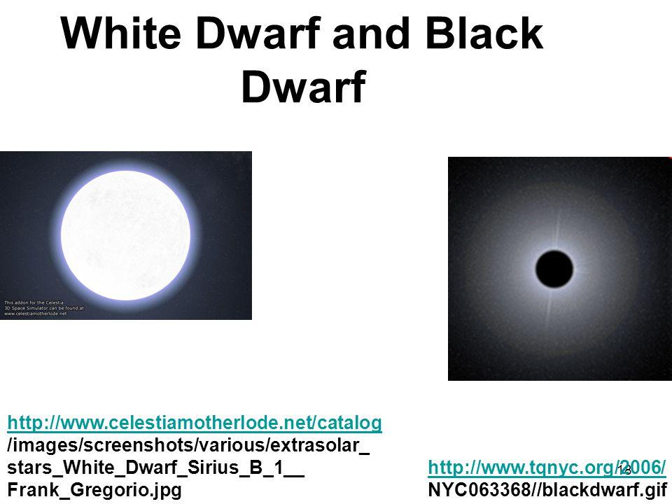 White Dwarf and Black Dwarf