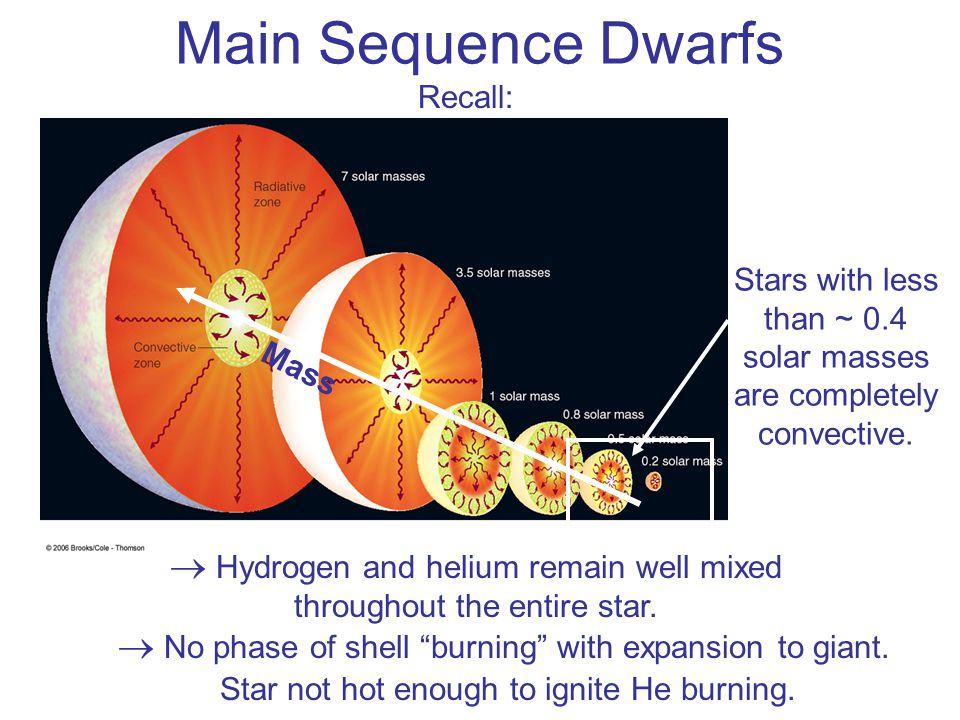 Main Sequence Dwarfs Recall: Stars with less than ~ 0.4 solar masses are completely convective. Mass.