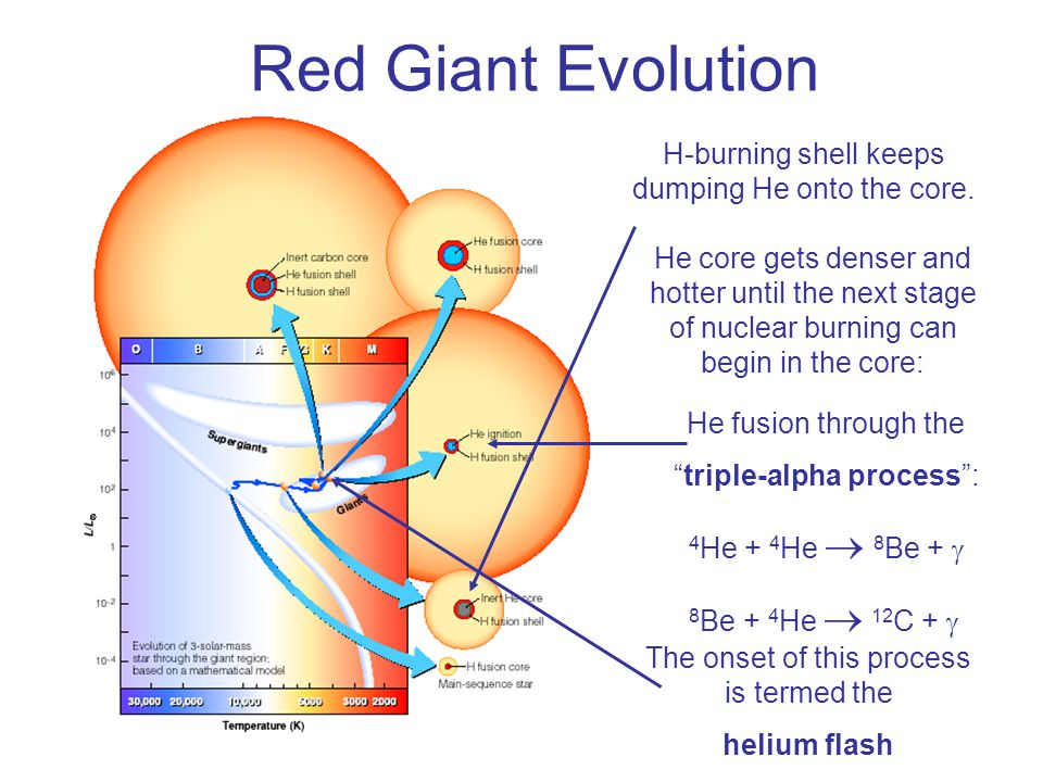 Red Giant Evolution H-burning shell keeps dumping He onto the core.