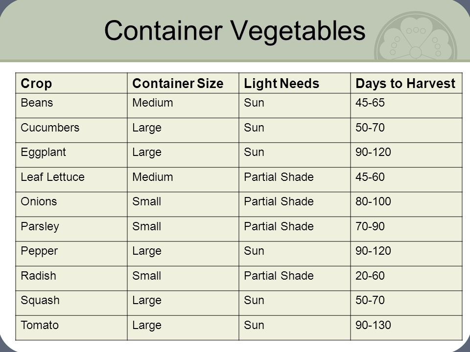 Container Vegetables Crop Container Size Light Needs Days to Harvest