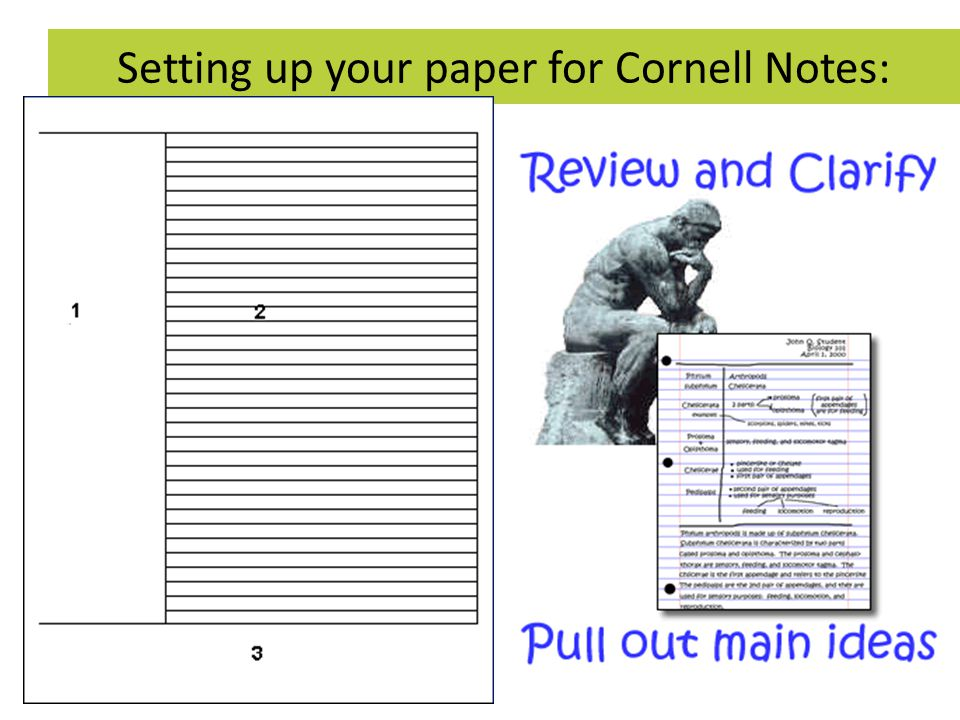 Cornell Notes  Ppt Video Online Download