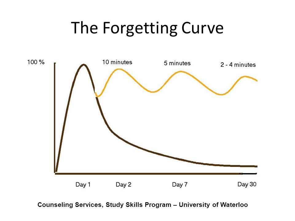 Counseling Services, Study Skills Program – University of Waterloo