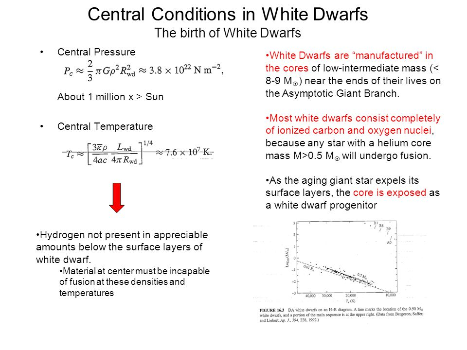 Central Conditions in White Dwarfs The birth of White Dwarfs
