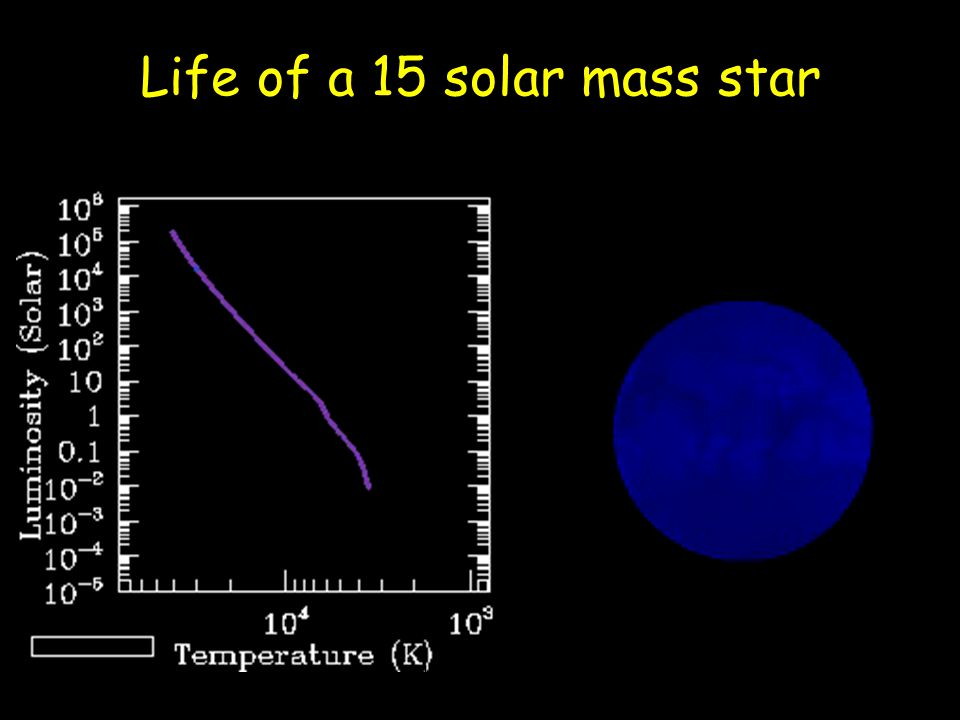 Life of a 15 solar mass star