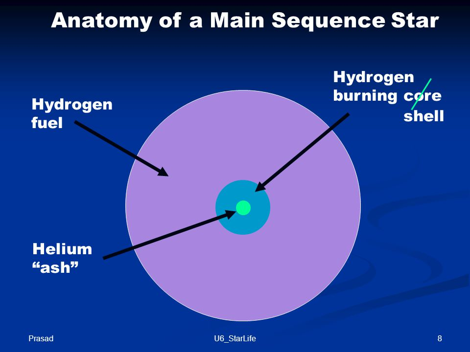 Anatomy of a Main Sequence Star