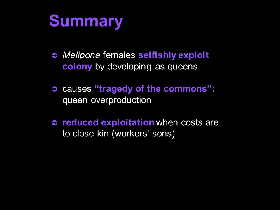 Alternative explanations for excess queen production in Melipona