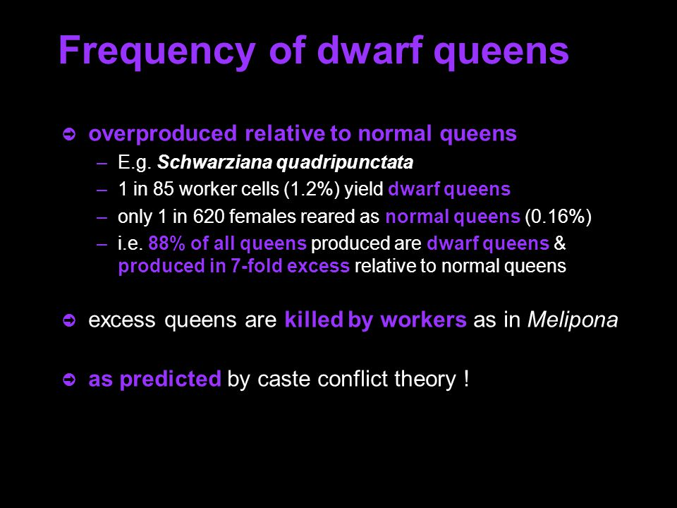 Fig. 3. Excess dwarf queens (left) are killed by the workers.