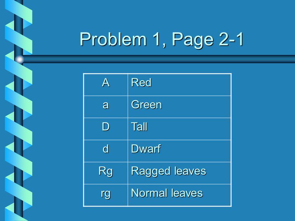 Problem 1, Page 2-1 A Red a Green D Tall d Dwarf Rg Ragged leaves rg
