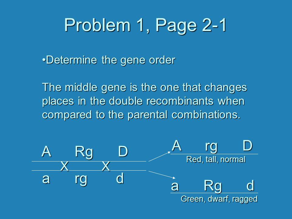 Problem 1, Page 2-1 A rg D A Rg D a rg d a Rg d X