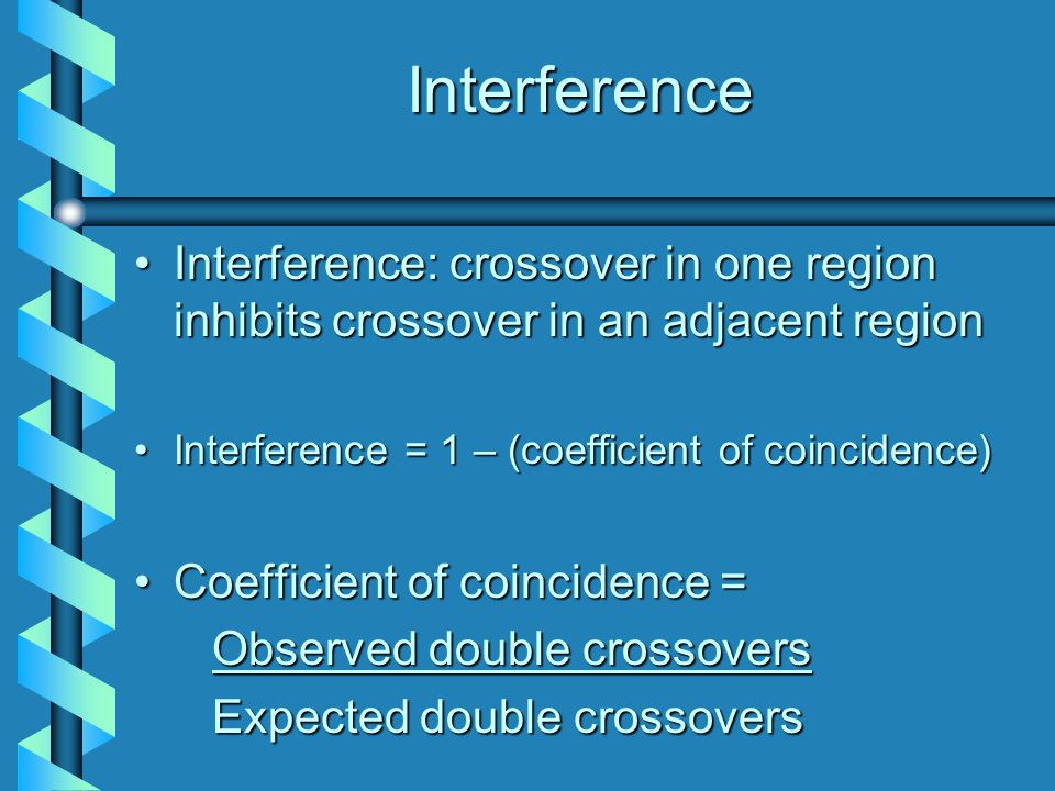 Interference Interference: crossover in one region inhibits crossover in an adjacent region. Interference = 1 – (coefficient of coincidence)