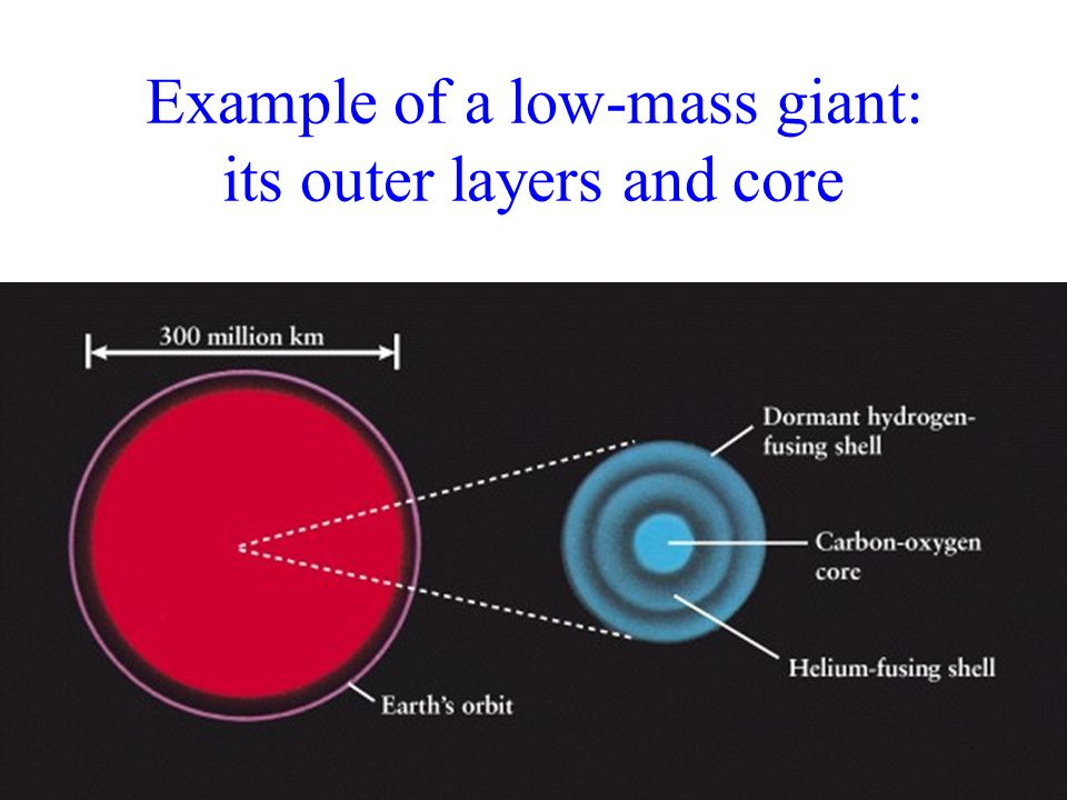 Example of a low-mass giant: its outer layers and core