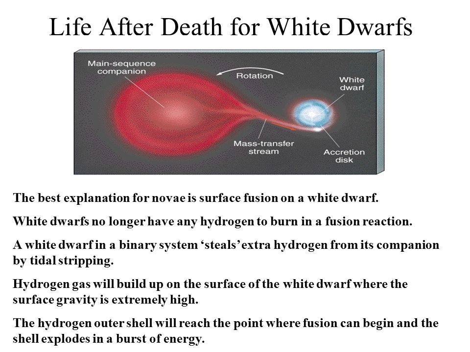 Life After Death for White Dwarfs