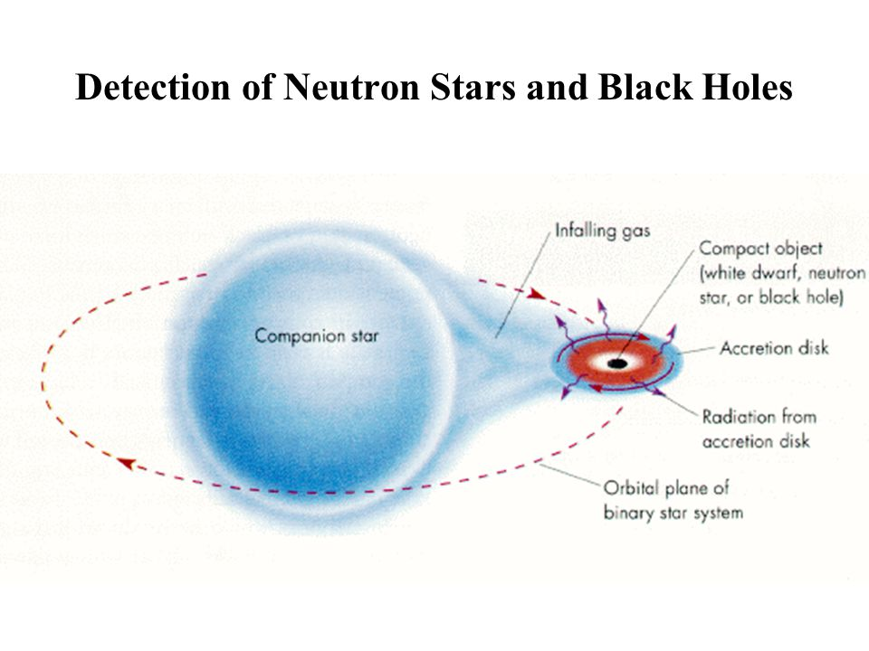 Detection of Neutron Stars and Black Holes