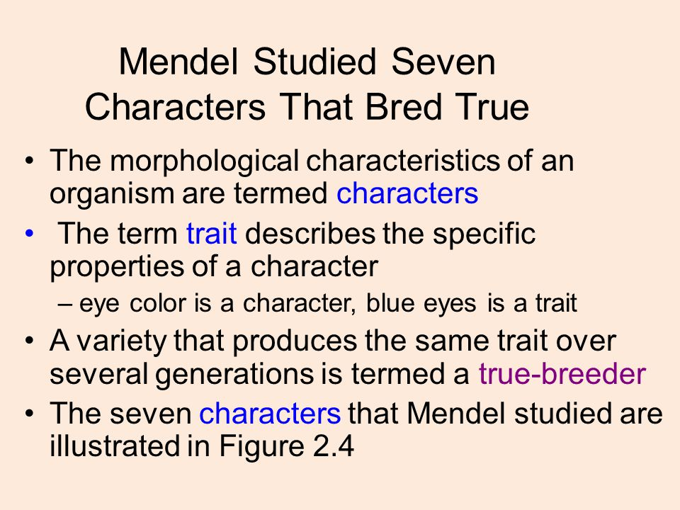 Mendel Studied Seven Characters That Bred True