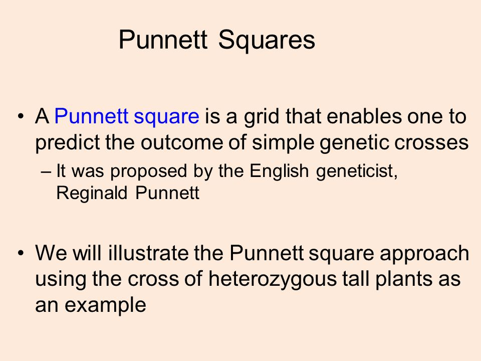 Punnett Squares A Punnett square is a grid that enables one to predict the outcome of simple genetic crosses.