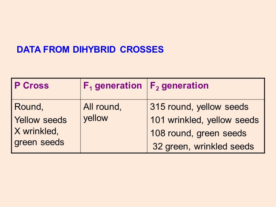 DATA FROM DIHYBRID CROSSES