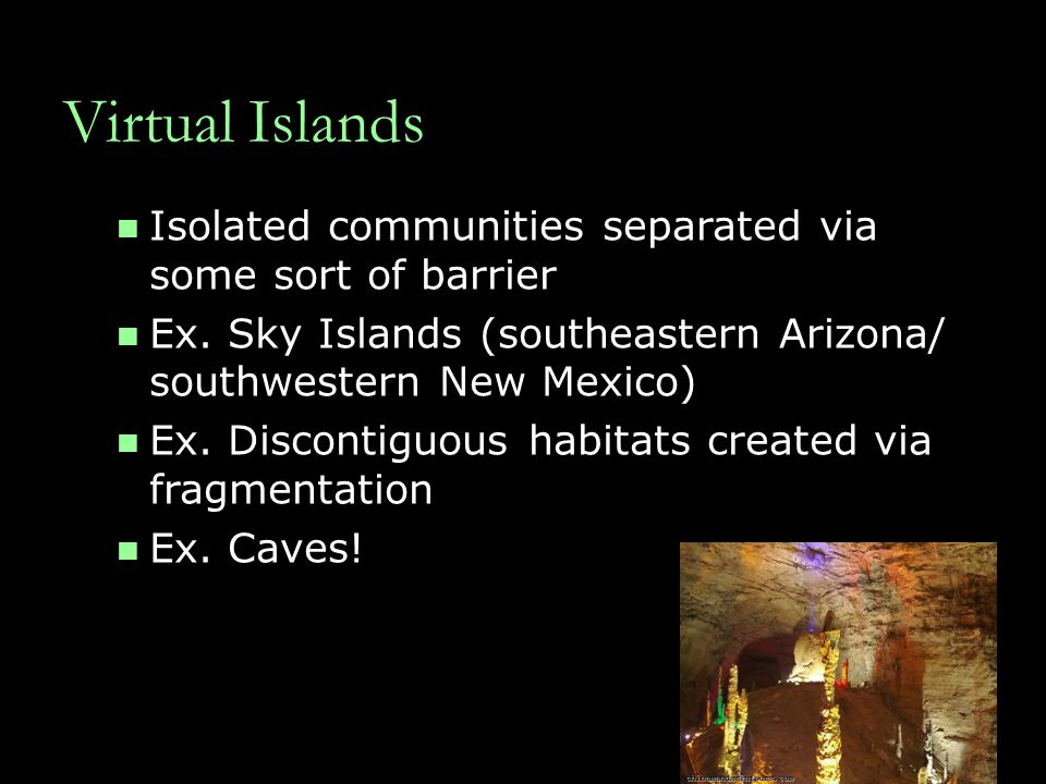 Virtual Islands Isolated communities separated via some sort of barrier. Ex. Sky Islands (southeastern Arizona/ southwestern New Mexico)